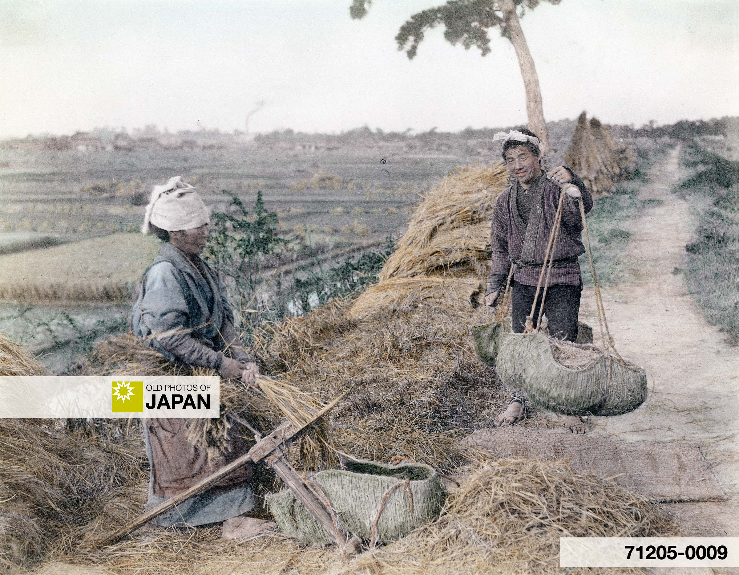Farmer's Couple Clearing Rice (Photo by Kozaburo Tamamura)