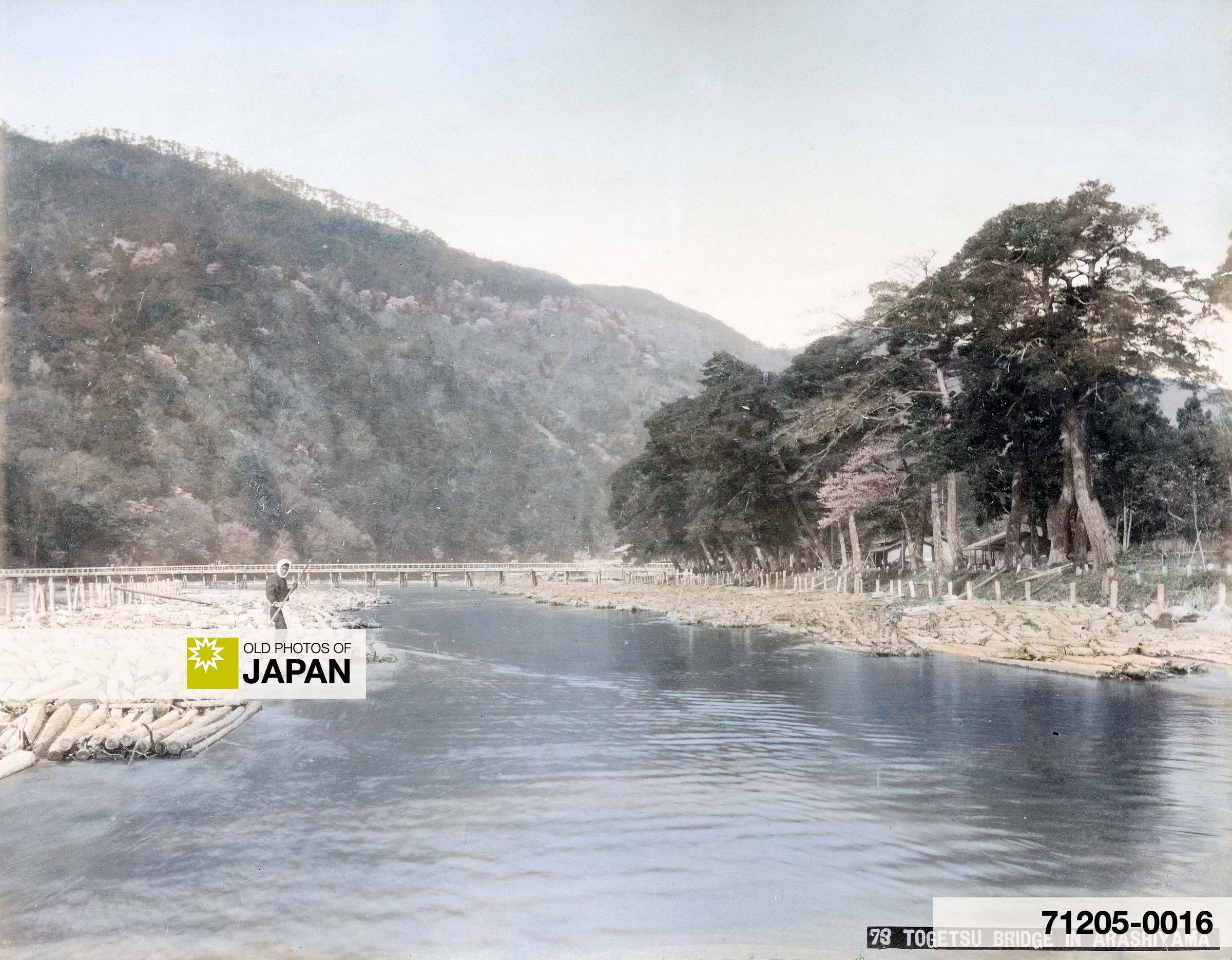 Floating Logs at Togetsu Bridge, Arashiyama, Kyoto