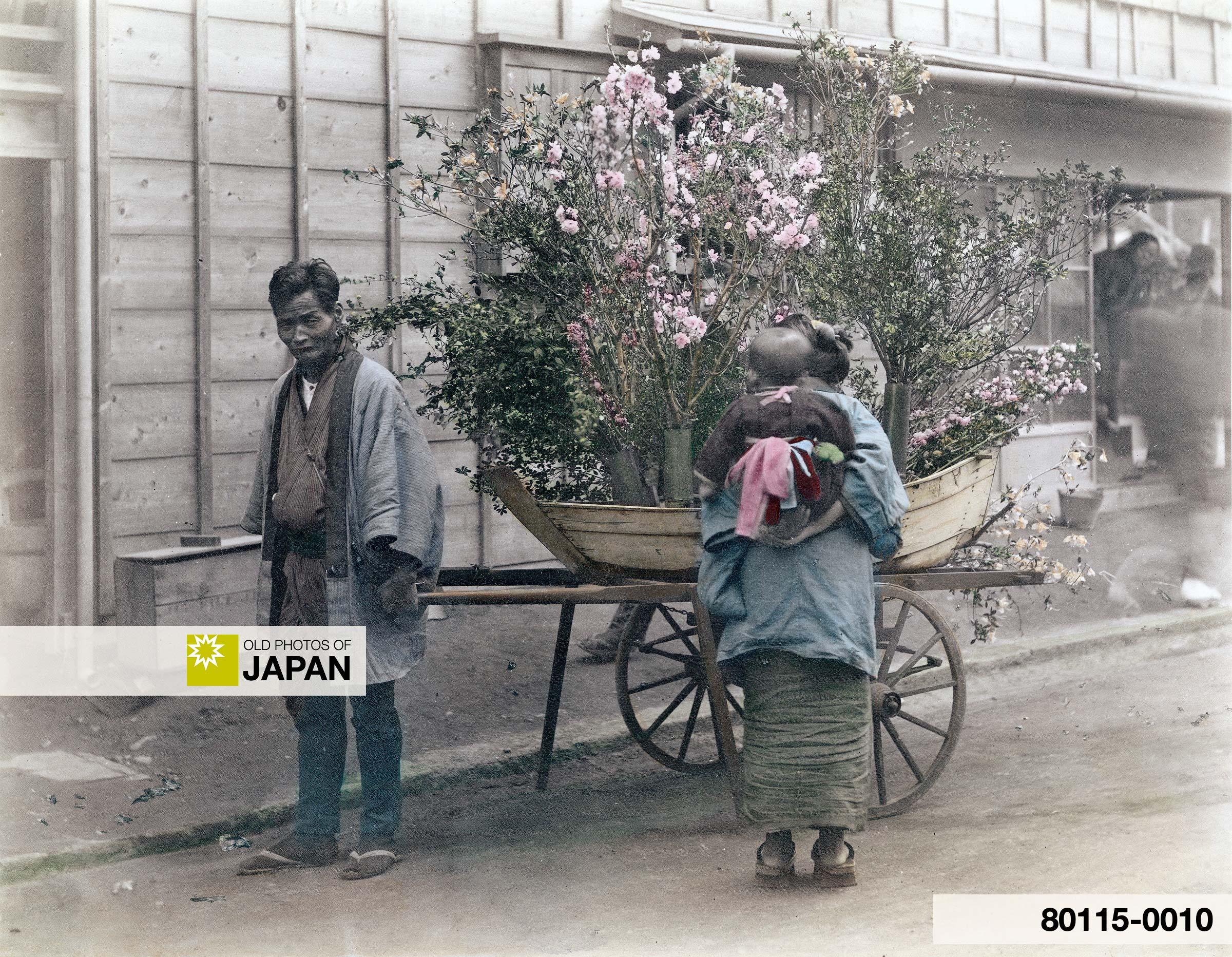 Japanese Flower Peddler