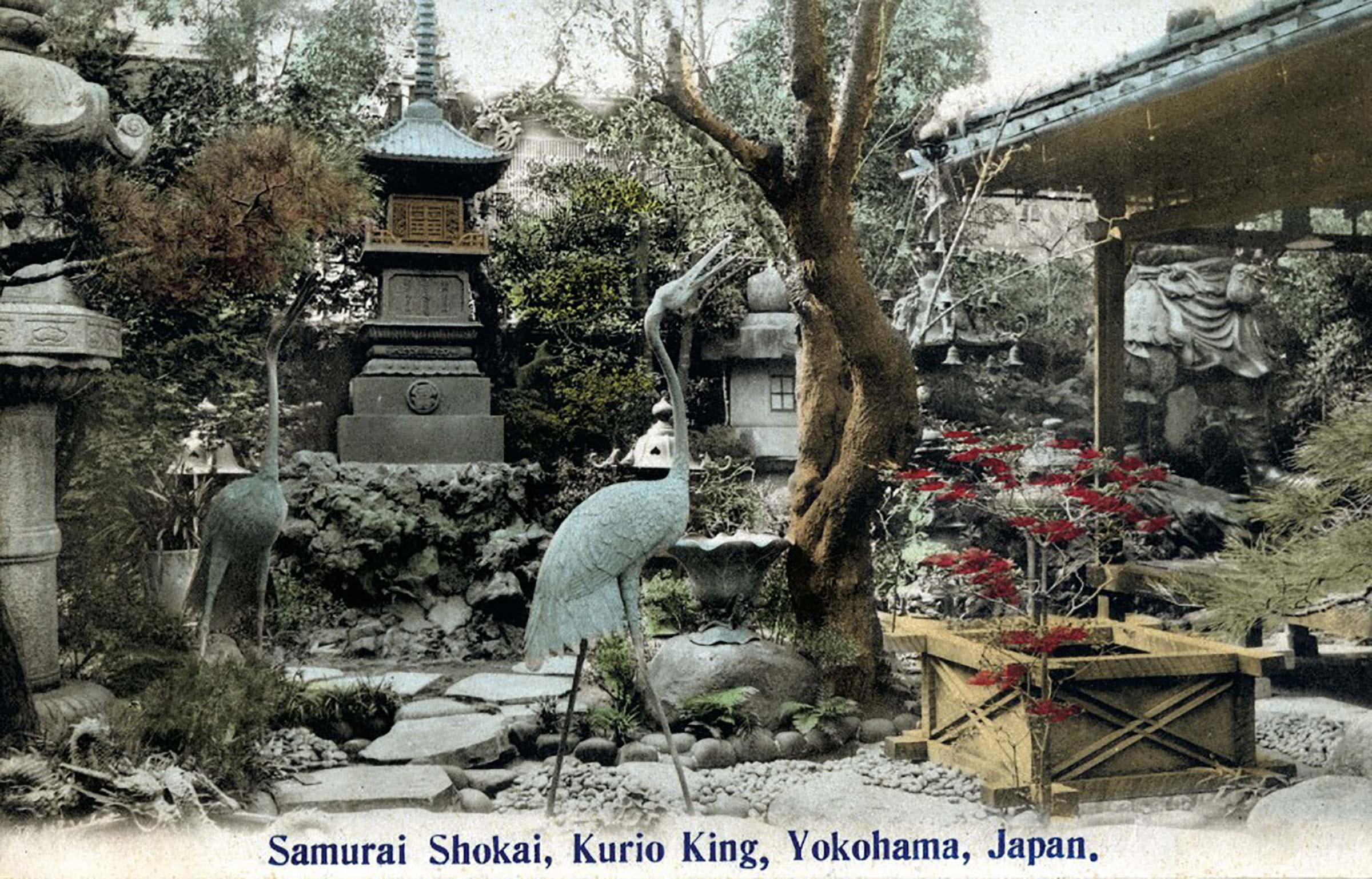 Samurai Shokai Garden