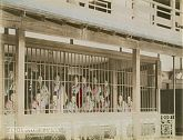 Japanese Prostitutes